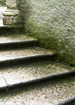 Moss-covered stairs